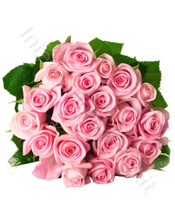 bouquet_20_rose_rosa-247x300