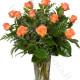 Bouquet di 12 Roselline arancio