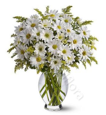 bouquet-di-margherite1-510x600
