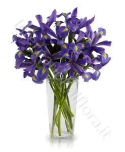 bouquet_iris_blu-247x300