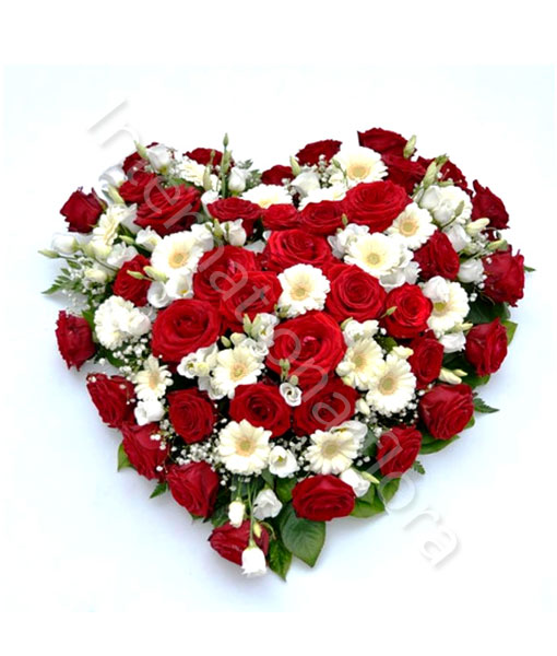 Souvent Cuore di Rose rosse e Fiori bianchi TV31