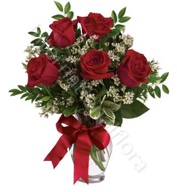5-rose-rosse-international