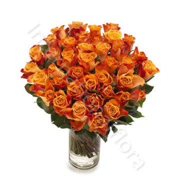bouquet-di-50-rose-arancio
