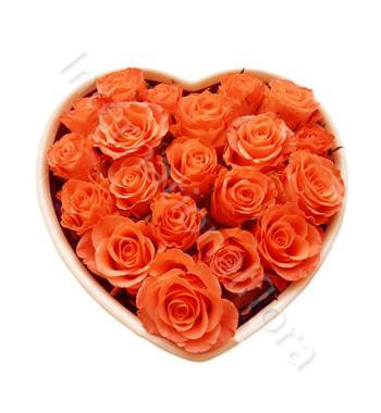 cuore-di-rose-arancio-510x600