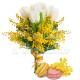 Bouquet di Mimose e Tulipani con Macaron
