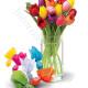 Bouquet di Tulipani con Ovetti