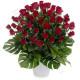 Bouquet di 50 Rose rosse