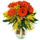 Bouquet di Gerbere con Mimosa